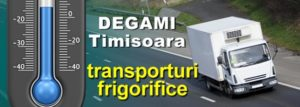 transporturi frigorifice